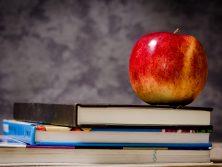 L4Life School Transitions 2020